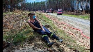 WELT THEMA: Riesiger Waldbrand bei Lübtheen - Weiterer Ort evakuiert