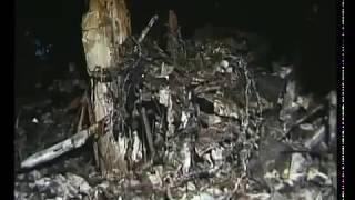 """WDR: """"Warum fliegt der Attentäter am 11. September 2001 erstmal über das Pentagon rüber?"""""""
