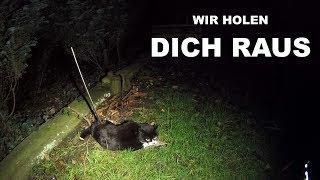 """""""WIR HOLEN DICH RAUS"""" - Tiernotruf #138"""
