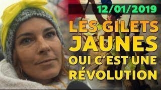 RÉVOLUTION ! LES GILETS JAUNES - 12/01/2019