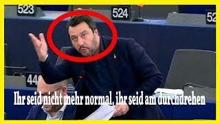 Salvini: Ihr seid nicht mehr normal, ihr seid am durchdrehen...Europaparlament (2019) HD
