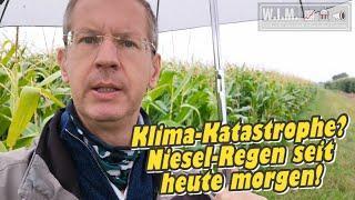 Niesel-Regen schon seit heute morgen. Deshalb Klima-Krisengebiet Rhein-Neckar? Wandel vs. Erwärmung