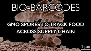 Bio-Barcodes: GMO Spores Hidden in Food to Track Supply Chain