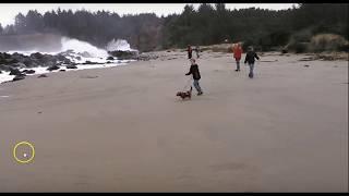 Huge Wave Sweeps Family Into Ocean As Waves Dozens of Feet High Hit Oregon Beach