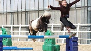 Das ist okay ☺  Pony Hurrican hat Freude