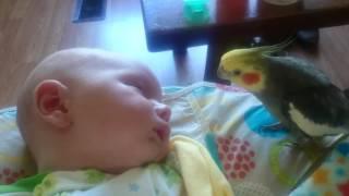 Schlaflied für Baby