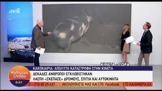'Schwein gehabt'  LIVE-Sendung im griechischen Fernsehen