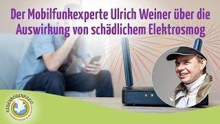 Der Mobilfunkexperte Ulrich Weiner über die Auswirkung von schädlichem Elektrosmog