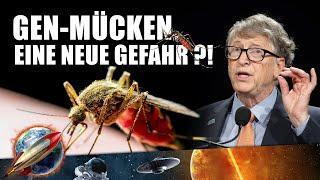 Gentechnisch veränderte Moskitos freigelassen: So gefährlich sind sie! (Doku/Deutsch/2021/Neu)