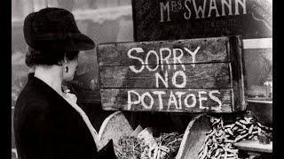 Food Hyperinflation Begins (985)