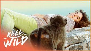 The Animal Communicator and her incredible Ability | Animal Communicator | Real Wild