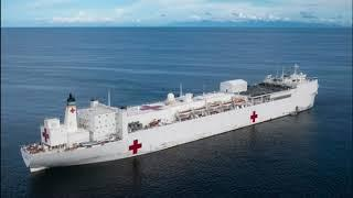 Trump Orders Medical Ship with 1000 Rooms to Dock at New York Harbor
