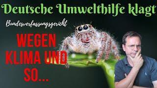 Deutsche Umwelthilfe klagt vor dem Bundesverfassungsgericht