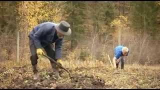 Teil 2 Ein gottgefälliges Leben - Die Amish in den Rocky Mountains (2)