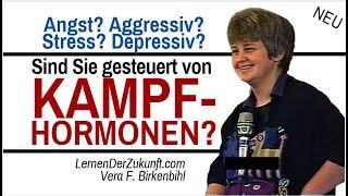 Nie mehr OPFER negativer Gefühle sein   Wie das Reptilienhirn uns steuert   Vera F. Birkenbihl