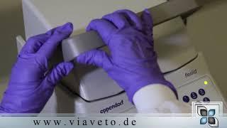 PCR - Eine kritische Betrachtung