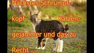 Nächstes Schrumpfkopf Katzengejammer und das mit Recht!!!