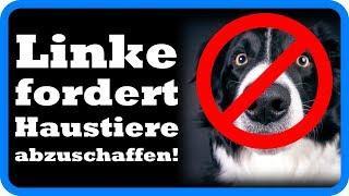 Die tägliche Bevormundung: Linke Autorin fordert Hunde und Katzen abzuschaffen!