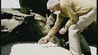 Deadly Dust ~ Todesstaub ~ Uran-Munition und die Folgen