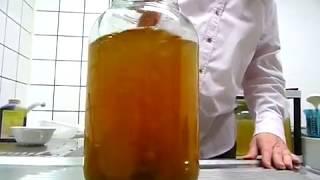 Wasserkefir ganz einfach selbst herstellen: Die Wasserkefir-Anleitung für zuhause
